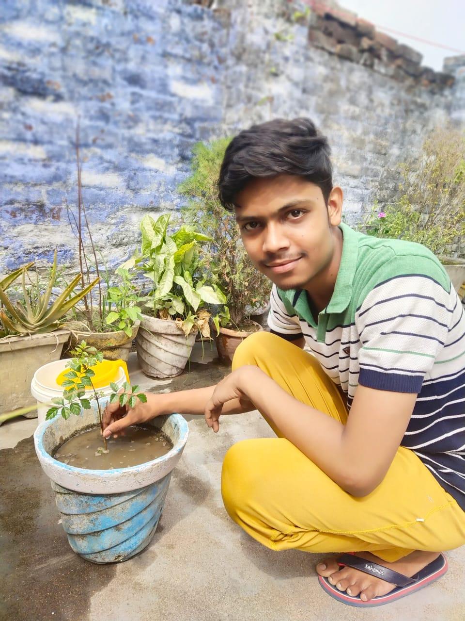 सीतापुर :  5 जून विश्व पर्यावरण दिवस पर विद्यालय द्वारा चलाया गया जागरूकता अभियान