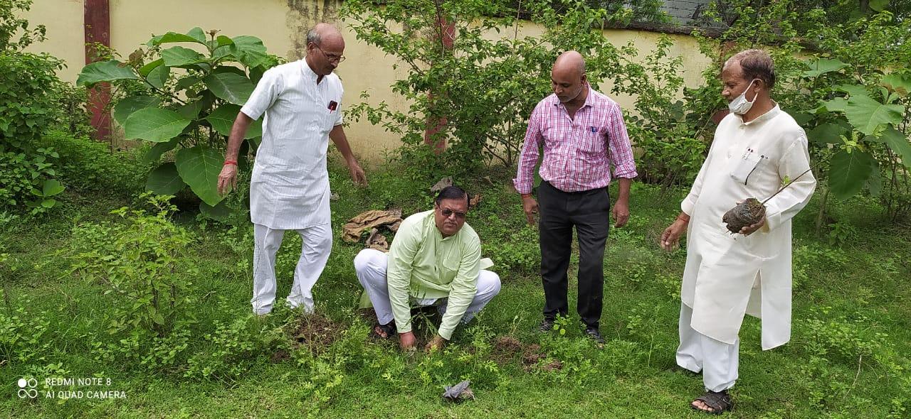 सोनभद्र: तापीय परियोजना अनपरा के उप महाप्रबंधक ने विद्यालय में किया पौधरोपण